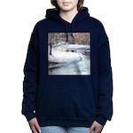 PILLOW-ESB-Winterscene Women's Hooded Sweatshi