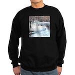 PILLOW-ESB-Winterscene Sweatshirt (dark)