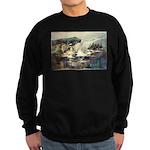 E75-TrellisBridge Sweatshirt (dark)