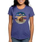 R-XmasStar-GuineaPig3 Womens Tri-blend T-Shirt