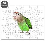 Cape Parrot Puzzle