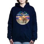 R-XmasStar-ShetlandPony Women's Hooded Sweatsh