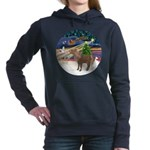 R-XmasMagc-ShetlandPONY Women's Hooded Sweatsh
