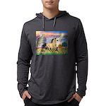 Cloud Star & Buckskin horse Mens Hooded Shirt