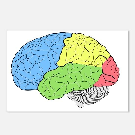 Unique Brain Postcards (Package of 8)
