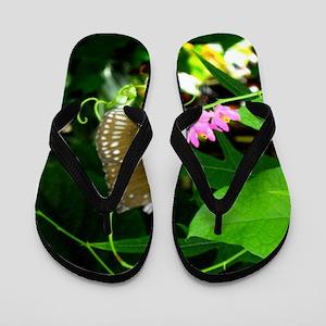 Fairy Butterfly Flip Flops