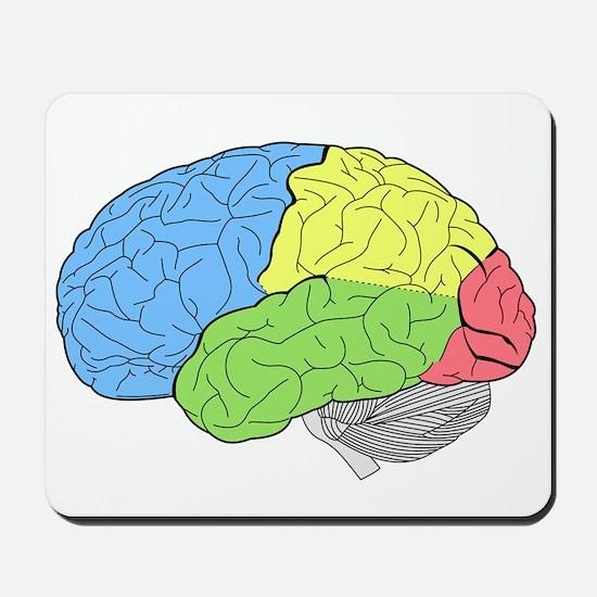 Primary Brain Mousepad