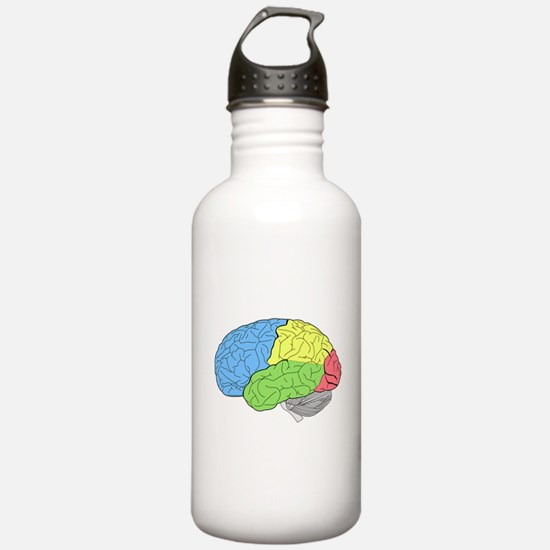 Primary Brain Sports Water Bottle