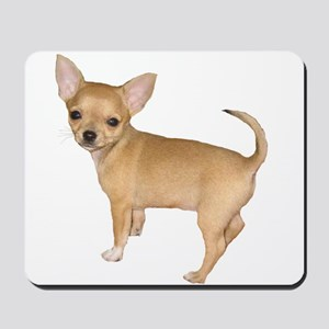 Chihuahua Short Hair Dogs Mousepad