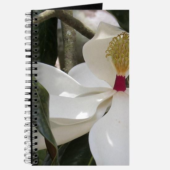 Alabama Magnolia Journal