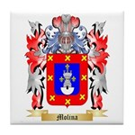 Molina Tile Coaster
