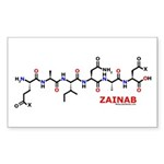 Zainab molecularshirts.com Sticker