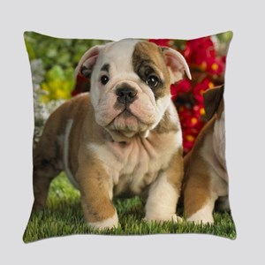 Cute English Bulldog Puppy Everyday Pillow