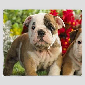 Cute English Bulldog Puppy King Duvet