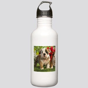 Cute English Bulldog Puppy Sports Water Bottle