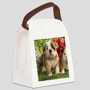 Cute English Bulldog Puppy Canvas Lunch Bag