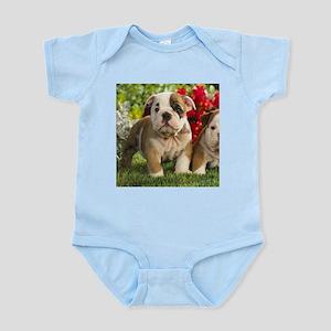 Cute English Bulldog Puppy Body Suit