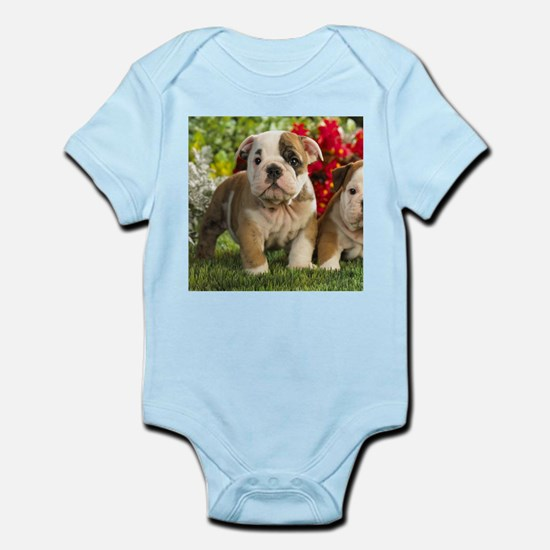 Cute English Bulldog Puppy Body Suit
