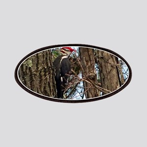 Male Pileated Woodpecker Patch