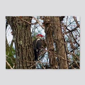 Male Pileated Woodpecker 5'x7'Area Rug