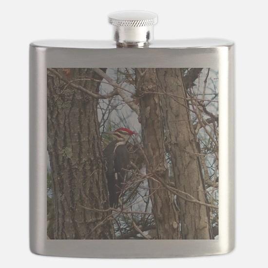 Male Pileated Woodpecker Flask