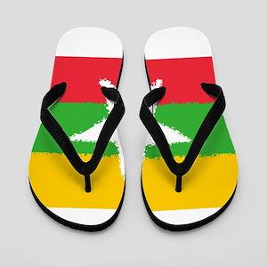 Burma in 8 bit Flip Flops
