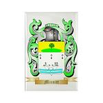 Minnitt Rectangle Magnet (100 pack)