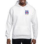 Minar Hooded Sweatshirt