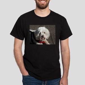 Cute bichon frise dog T-Shirt