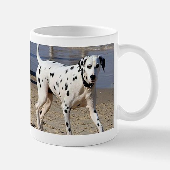 Dalmatian dog at beach Mugs