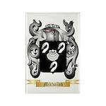 Mikhailov Rectangle Magnet (100 pack)