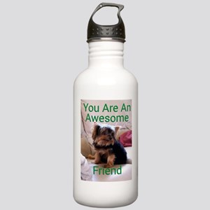 You are an awesome Stainless Water Bottle 1.0L