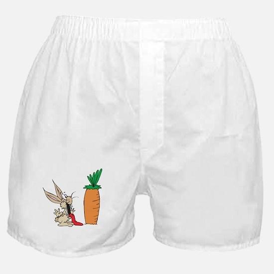 Funny Rabbit Boxer Shorts
