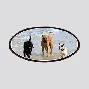 Three dogs at beach Patch