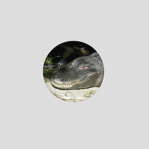 Alligator Sunbathing Mini Button