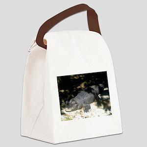 Alligator Sunbathing Canvas Lunch Bag