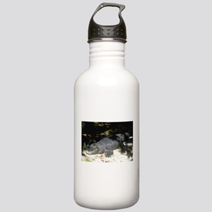 Alligator Sunbathing Water Bottle