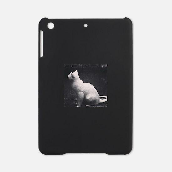China iPad Mini Case