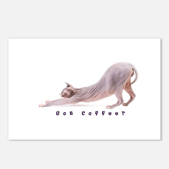 Unique Hairless cat Postcards (Package of 8)