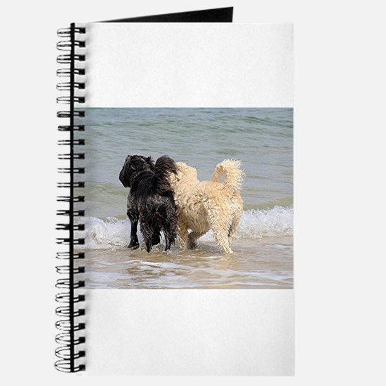 Two dogs at beach Journal