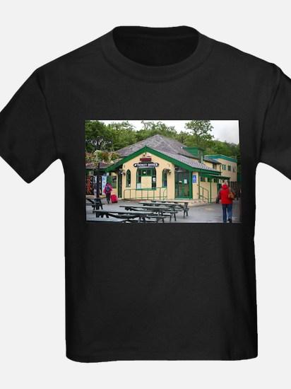 Snowdon Mountain Railway Station, Llanberi T-Shirt