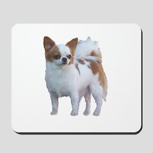 Chihuahua Long Hair Dog Mousepad