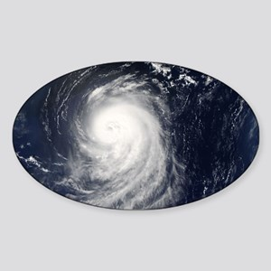HURRICANE IRENE Sticker (Oval)