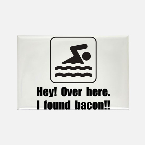 Found Bacon Magnets