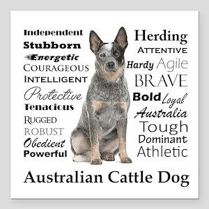 "Cattle Dog Traits Square Car Magnet 3"" x 3"""