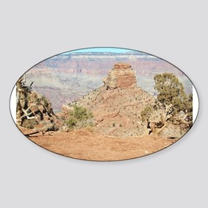 South Kiabab Mule Ride To Phantom Ranch Sticker