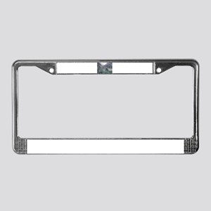 Bright Angel Mule Ride To Phan License Plate Frame