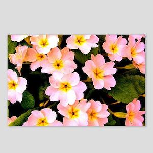 Pink Wildflowers Postcards (Package of 8)