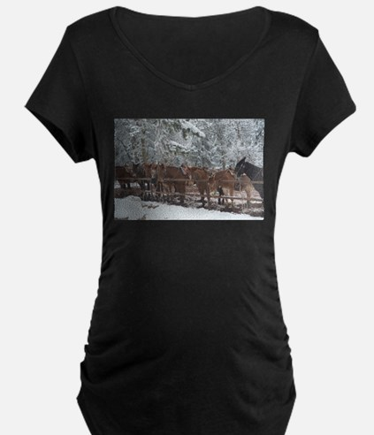 Stables at the Grand Canyon Maternity T-Shirt