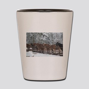 Stables at the Grand Canyon Shot Glass